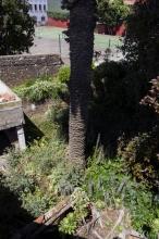 Views from the hostel / Vistas desde la casa / Ansichten von der Herberge